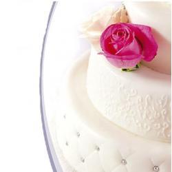 Мастика сахарная Топ Продукт (Белая, 600гр.)