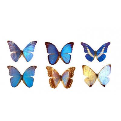 Вафельные бабочки 5 см (6 шт.)
