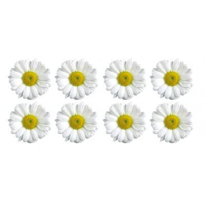 """Вафельные цветочки """"Ромашки"""" №2 4,5 см (8 шт)"""